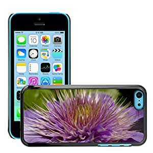 Hot Style Cell Phone PC Hard Case Cover // M00307767 Clematis Climber Flower Purple // Apple iPhone 5C