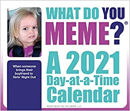 2021 What Do You Meme? Day at a Time Box Calendar: Trends