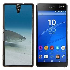 YiPhone /// Prima de resorte delgada de la cubierta del caso de Shell Armor - Sand Shark Underwater Blue Ocean Mar - Sony Xperia C5 Ultra