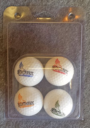 4-Nighthawk-Glow-In-Dark-LED-Light-Up-Golf-Balls-Official-Size-Weight-Constant-On