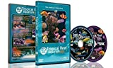 Aquarium DVD -2 DVD SET Tropical Reef Aquarium XXL Box - With Natural Sound and Relaxing Music