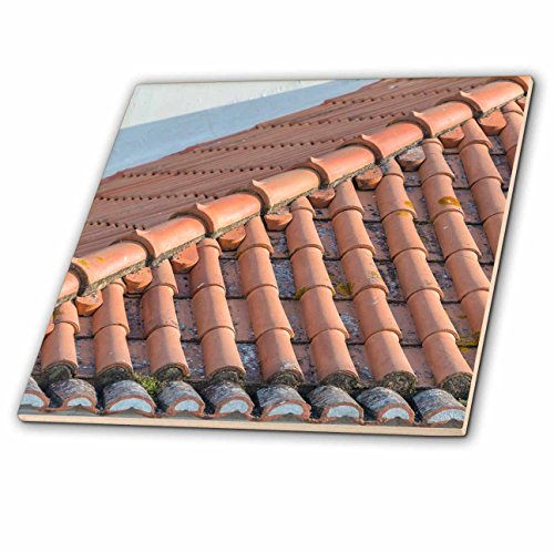 3drose-danita-delimont-architecture-portugal-lisbon-red-tile-roof-8-inch-ceramic-tile-ct-227806-3