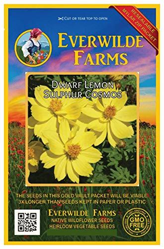 - Everwilde Farms - 1 Oz Dwarf Lemon Cosmos Wildflower Seeds - Gold Vault