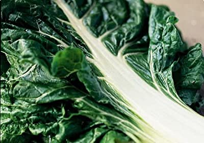300 FORDHOOK GIANT SWISS CHARD (Perpetual Spinach) Beta Vulgaris Cicla Vegetable Seeds