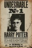 "Harry Potter ""Undesirable No 1"" Maxi Poster"