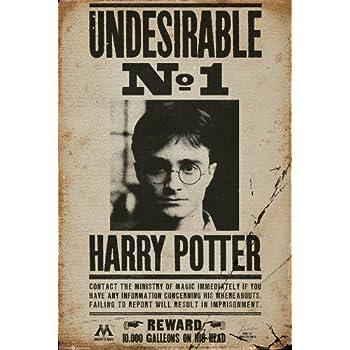 Amazon Com Harry Potter Door Poster The Fat Lady