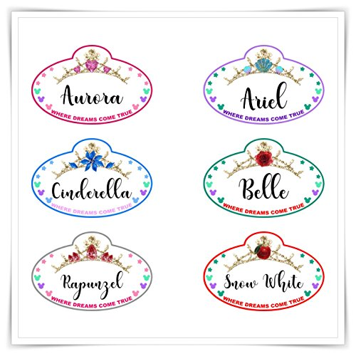 Personalized Disney Inspired Princess Name Tag Magnet. Handmade Disney Cruise Door Princess Magnet.