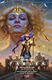 Fables The Deluxe Edition Book Fourteen (Fables Deluxe Editions)