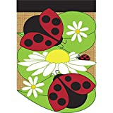 Ladybug Friends and Daisies 42 x 29 Round Bottom Burlap Double Applique Large House Flag For Sale