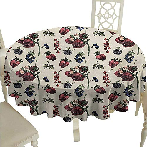 Zodel Stain-Resistant Tablecloth Vintage Artistic Drawing of Berry Fruits Tasty Vegetarian Food Organic Eating Garden Theme Easy to Clean D54 Suitable for picnics,queuing,Family