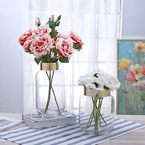 cyl home Vases Cylinder Clear Glass Flower Arrangement Vases Brass Gold Band Decor Dining Table Centerpieces Gifts for Wedding Housewarming Party, 8.7 H x 5.9 D