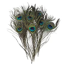 """100 Pcs Peacock Feathers 10""""-12"""""""