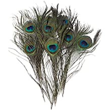 KAYSO PF1012-30 Pack of 30pc Natural Peacock Feathers 10-12''