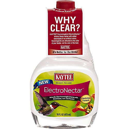 Kaytee Hummingbird Electronectar, 16 oz Ready to Use (Water To Sugar Ratio For Hummingbird Feeder)