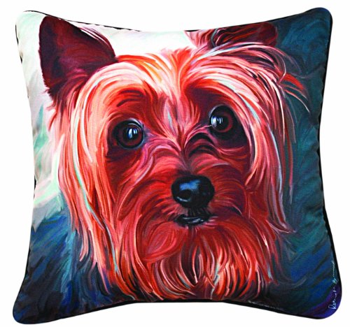 Yorkie Pictures (Manual Yorkie Style Paws and Whiskers Decorative Square Pillow, 18-Inch)