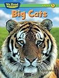 Big Cats (We Read Phonics Leveled Readers)