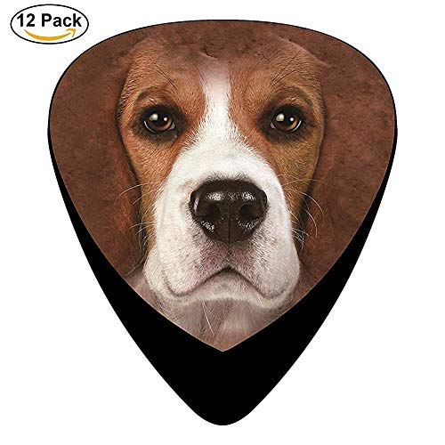 Beagle Face Celluloid Guitar Picks 12 Pack For Electric Acoustic - Beagle Face