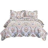 Bedsure 100% Cotton Printed Quilt Set - Vintage