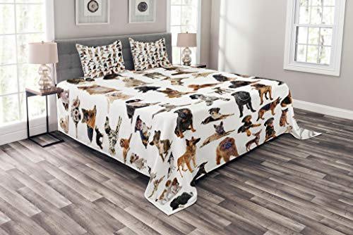 Lunarable Dog Lover Coverlet Set Queen Size, Composite Picture with Dogs Australian Sheepdog Belgian Boxer Italian Mastiff, Decorative Quilted 3 Piece Bedspread Set with 2 Pillow Shams, Multicolor ()