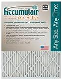 """Accumulair Platinum 1"""" Filter (MERV 11), 10.0"""" L x 30.0"""" W x 1.0"""""""