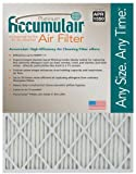 Accumulair Platinum 10x30x1 (9.75x29.75) MERV 11 Air Filter/Furnace Filters (4 pack)