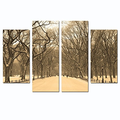 Sea Charm- Winter Scenic Wall Art,New York City Central Park Mall in Foggy Picture Print on Canvas,Modern Home Decoration,Framed and Ready to - New York Mall In City