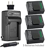Kastar GOPRO3 Battery (3-Pack) and Charger Kit for GoPro HD HERO3 - HERO3+ - AHDBT-302 work with GoPro AHDBT-201 - AHDBT-301 - AHDBT-302