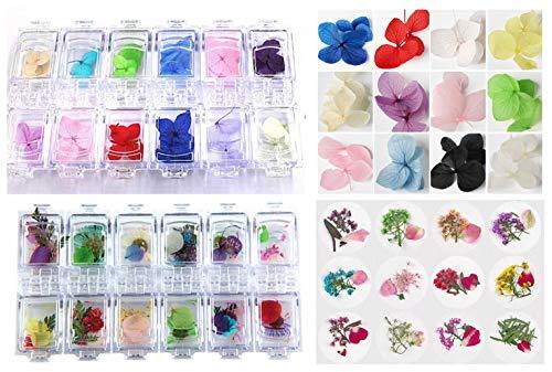 XICHEN 60 PCS/2 Boxes three-dimensional nail dry flowers Large petal Zou Ju plus Needle Chrysanthemum Nail Art Accessories