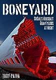 Boneyard: SoCal's Aircraft Graveyards at Night