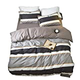 ORoa Striped Boys Queen Duvet Cover Sets Multi Color 3 Piece Bedding Set Full Size for Teens Man with 2 Pillow Shams Zipper Closure and 4 Corner Ties(Queen/Full, Style 1)