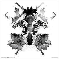 Robert Farkas Rorschach Ink Blot Style Fox Modern Contemporary Animal Decorative Art Poster Print 12x12