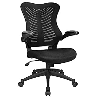 Furmax Mid Back Office Chair Mesh Desk Computer Chair with Flip Arms Swivel Task Chair with Ergonomic Headrest and Lumbar Support (Black)