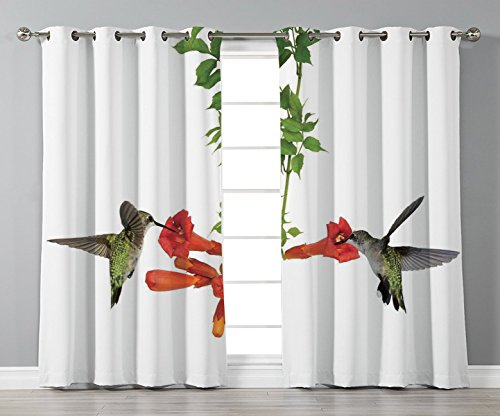 Nectar Vineyards (iPrint Satin Grommet Window Curtains,Hummingbirds Decor,Two Hummingbirds Sip Nectar from a Trumpet Vine Blossoms Summertime,2 Panel Set Window Drapes,for Living Room Bedroom Kitchen Cafe)