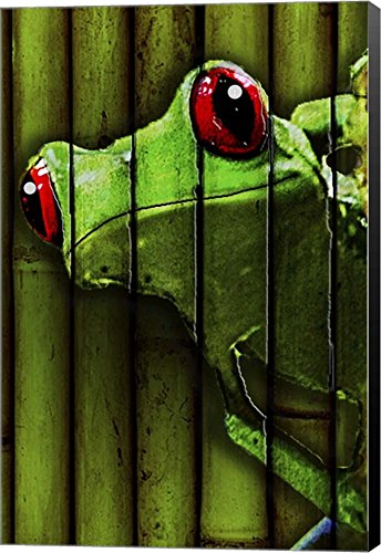 Camo Frog by Dana Brett Munach Canvas Art Wall Picture