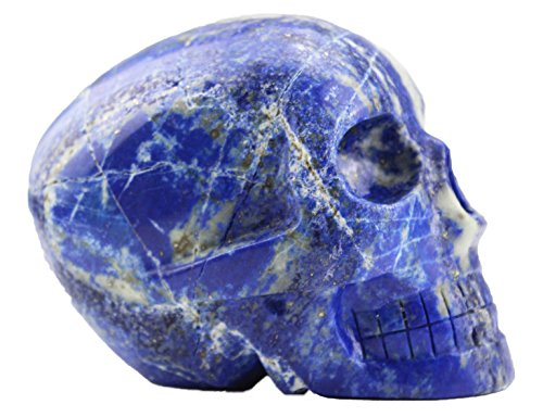 Laufout 2.54LB Natural Lapis Lazuli Crystal Carved Realistic Skull Sculpture, Healing Energy Reiki Collectible Figurine Michele Carved Skull