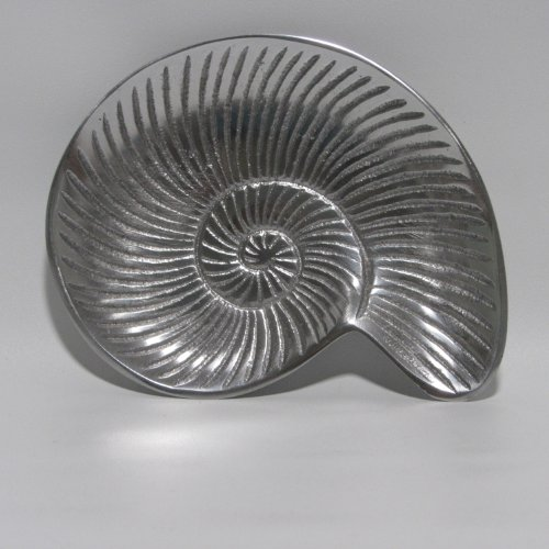 Snail Shell Soap Dish By India Handicrafts Buy Online In Uae