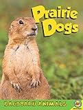 Prairie Dogs, Megan Kopp, 1616906308