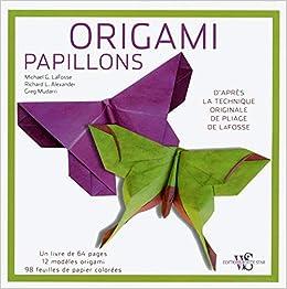 Origami Papillons 9788861125759 Amazoncom Books