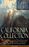 JOHN MUIR'S CALIFORNIA COLLECTION: My First Summer in the Sierra, Picturesque California, The Mountains of California, The Yosemite & Our National Parks ... Nature Writings and Wilderness Essays