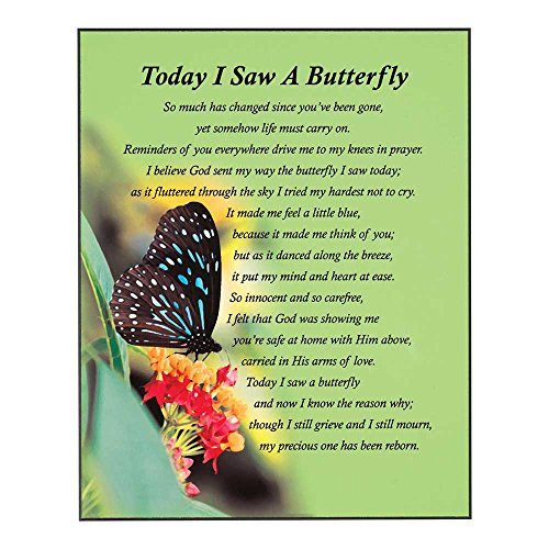 Dicksons Today I Saw A Butterfly Green 10 x 8 Wood Hanging Plaque