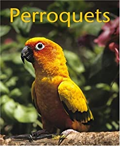 Paperback Les perroquets [French] Book
