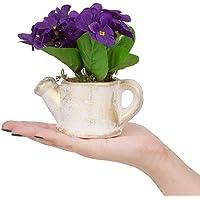 Porselen Saksıda Menekşe Çiçeği Yapay Çiçek MOR