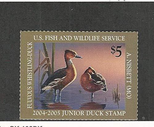 United States, Postage Stamp, JOS12 Mint NH, 2005 Junior Duck Stamp ()