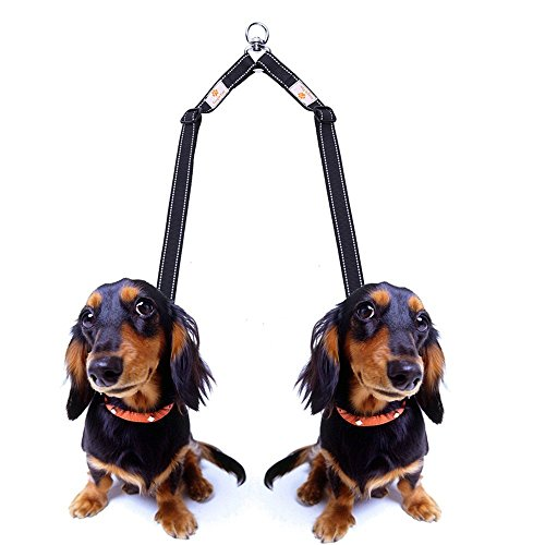 "hot sale 2017 Double Dog Leash Coupler - Snagle Paw No Tangle Double Dog Walking & Trainning Leash, Adjustable 1"" Dual Reflective Splitter Lead - Choose Regular 11-20"" or X-Long 16-28"" - Easily Walk 2 Dogs"