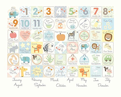 C R Gibson Baby S First Year Calendar By Carter S