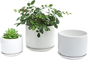 SanDope 6+5+4 inch Glazed Succulent Plant Pots - Cylindrical Ceramic Planters with Connected Saucer, Modern Ceramic Flower Planter, Pack 3 (White New)