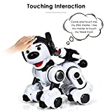 Costzon Remote Control Robotic Dog, Wireless