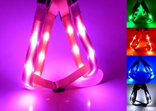 GoDoggie-GLOW – Arnés de seguridad para perro, reflectante con LED ...