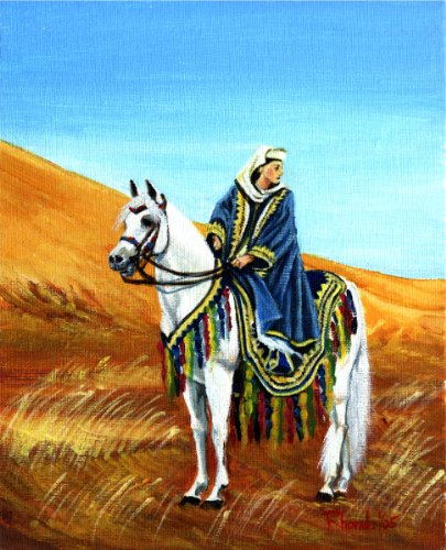 Arabian Native Costume Horse Portrait Matted Art Print - 5 in x 7 in Design - 8 in x 10 in Matted