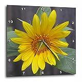 Cheap 3dRose dpp_11851_1 Sunflower Wall Clock, 10 by 10″